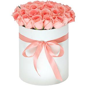 Цветы с доставкой калинград цветы на заказ нальчике